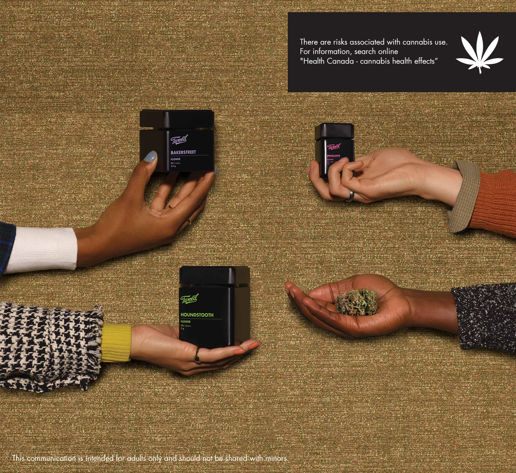Four hands holding Tweed cannabis flower containers and bud