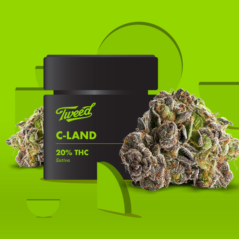 Houndstooth cannabis flower alongside its Tweed container